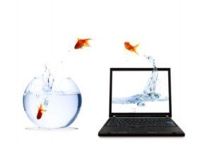 computer+fish